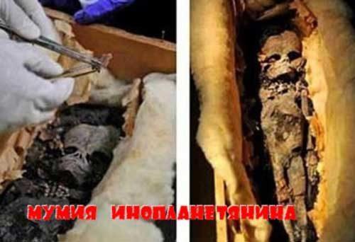 Древний артефакт, мумия инопланетянина