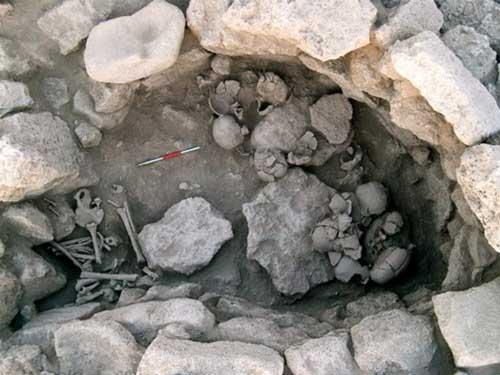 черепа зомби, Сирия