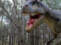 Динозавры погибли под жертвой собственного успеха.