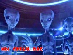 Серые инопланетяне живут среди нас, факты о которых вы можете не знать.