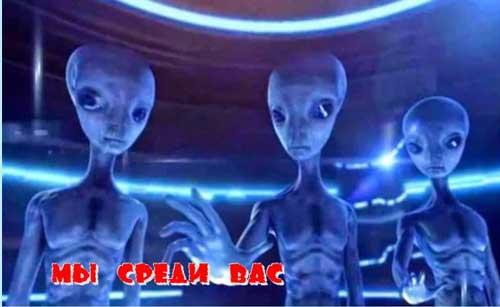 Серые инопланетяне живут среди нас