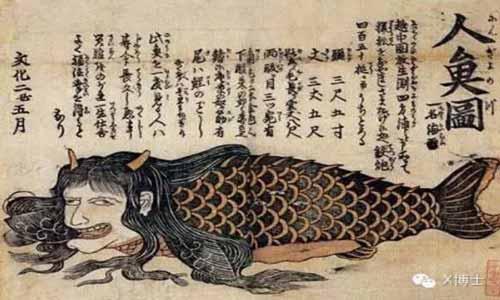 Японская русалка, весьма загадочное существо