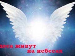 Могут ли люди стать ангелами в загробной жизни?