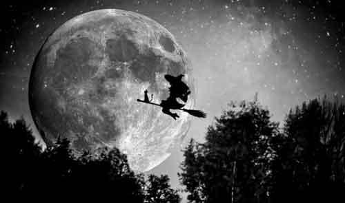 Черная кошка помощник ведьм, посланный дьяволом