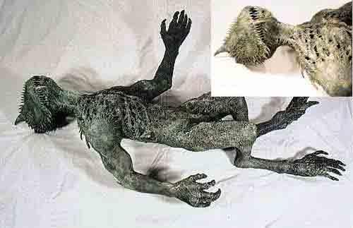 Таинственный зверь чупакабра нападал по всему миру