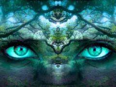 Интуиция возможность мозга предвидеть будущее.
