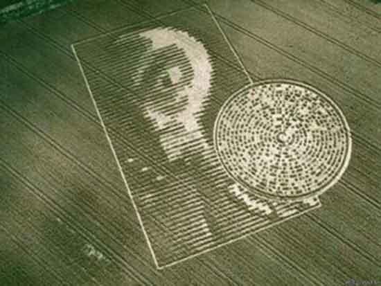 Круги на полях, о чем трактуют сообщения инопланетян