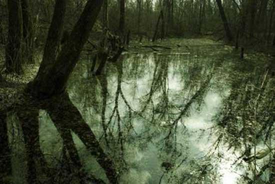 Воды долины Хэйчжу вероятно знают много ответов